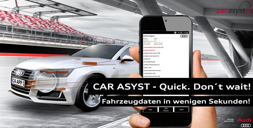 CAR ASYST - Fahrzeugdaten in wenigen Sekunden!